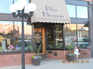 blue blossom store
